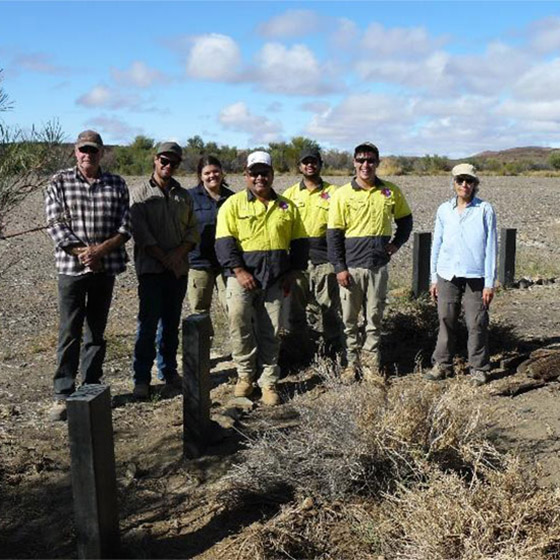 Arabana Rangers and Friends of Mound Springs work together for Springs Conservation